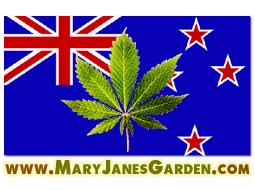 Marijuana New Zealand